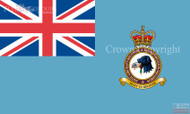Joint Aircraft Recovery and Transportation Squadron Ensign