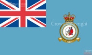 RAF Tactical Imagery Intelligence Wing Ensign