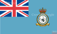 RAF 58 Regiment Squadron Ensign