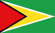 Guyana National Flag