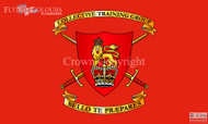 Collective Training Group flag