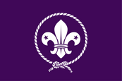 World Scout Flag Flag