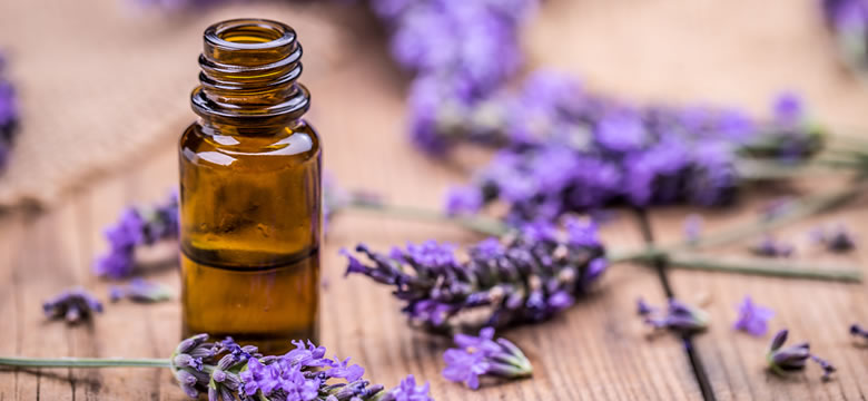 Lavender for Physical and Spiritual Healing - Original
