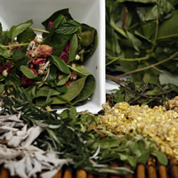 Magical Herbs and Roots to Incorporate in Your Spellwork - Original