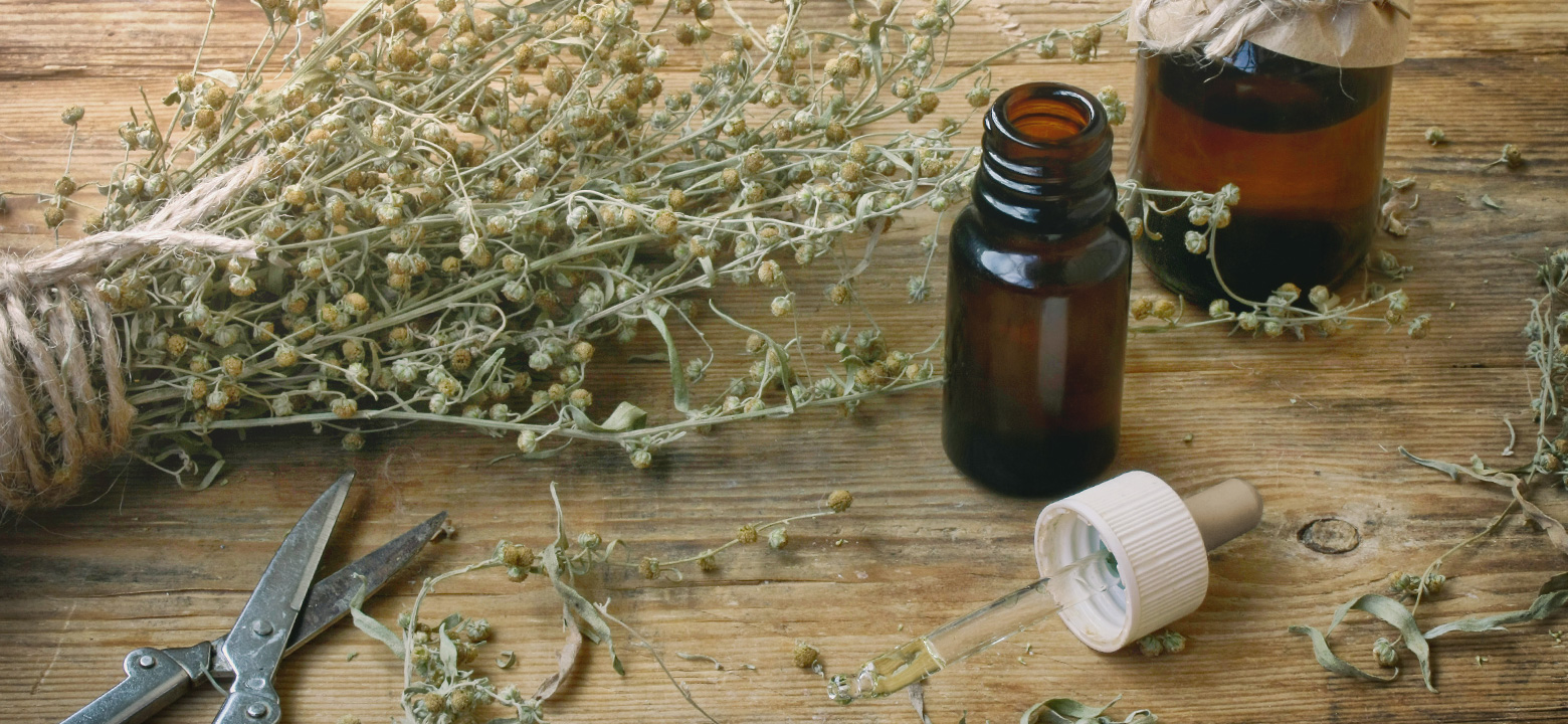 The Magical Uses of Mugwort