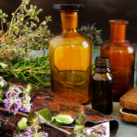 More Common Herbs for Spellwork - Original Products Botanica