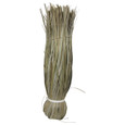 Guano Broom