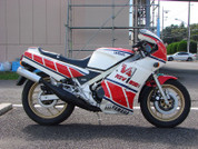 1984 RZV500R - NEW