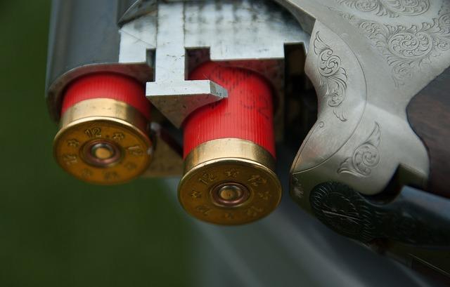 Bullets in gun