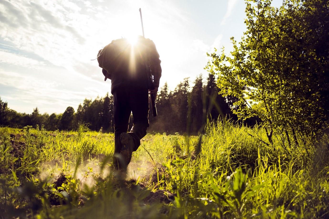 Hunter walking through grass