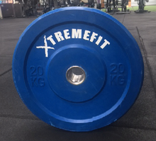 Pair of 20kg Bumpers (6 pairs left in container)