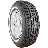 Mastercraft 215/75R15 WSW AS IV