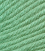 Ella Rae Cozy Soft Chunky 205 - Mint Scooter