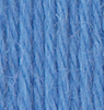 Ella Rae Superwash 30 - Blueberry