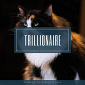 Trillionaire Money Affirmations