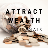 Attract Wealth Subliminals