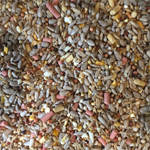 category-image-premium-seed-with-suet2.jpg