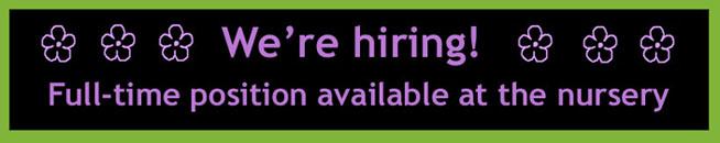 full-time-job-vacancy-banner-smaller-2.jpg