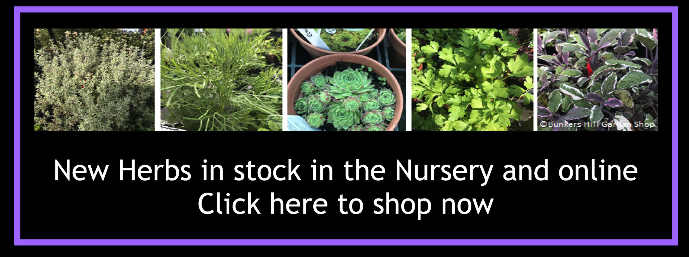 herb-banner-new.png