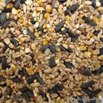 product-categories-bird-seed.jpg