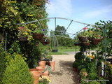 Freestanding Iron Pergola - Collection or local delivery only