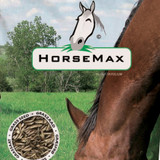 Horsemax 'Paddock' lawn seed - 500g (for 20sq m)