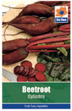 Beetroot 'Cylindra' Seeds