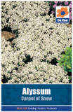 Alyssum 'Carpet of Snow' Seeds