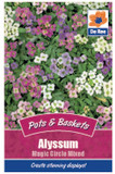 Alyssum 'Magic Circle Mixed' Seeds