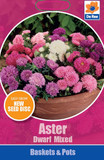 Aster Dwarf Mixed - Seed