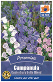 Campanula 'Canterbury Bells' Mixed Seeds