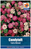 Candy tuft Seeds