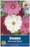 Cosmea Seeds