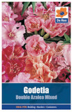 Godetia 'Double Azalea Mixed' Seeds