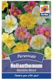 Helianthemum Mutabile Mixed Seeds