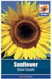 Sunflower 'Giant Single' Seeds