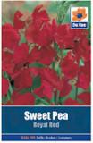 Sweet Pea 'Royal Red' Seeds