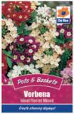 Verbena 'Ideal Florist Mixed' Seeds