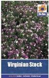 Virginian Stock Seeds