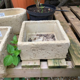 Lonstone Vintage Planters  - Square alpine planter
