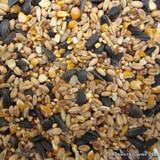 Wild bird seed 20kg