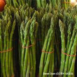 Asparagus Crown 'Aspalim' x 3