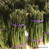 Asparagus Crown 'Portlim' x 3 (PRE-ORDER FOR MARCH 2021)