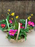 Spring Garden Trug