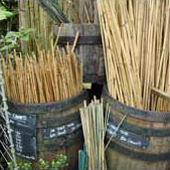Compost, Bark, Stakes, and Canes