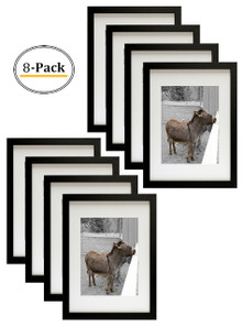 Simple and Stylish Picture Frame with Ivory Color Mat & Real Glass (12x16, Black) (8pcs/box)