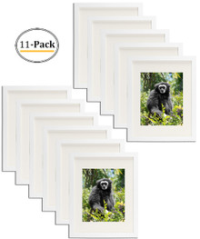 Simple and Stylish Picture Frame with Ivory Color Mat & Real Glass (11x14, White) (11pcs/box)
