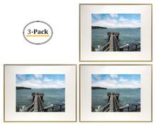 16x20 Frame for 11x14 Picture Gold Aluminum (3 Pcs per Box)