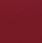 Painter's Palette Solids - Claret