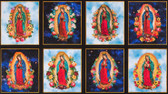 Our Lady Of Guadalupe Sky Panels